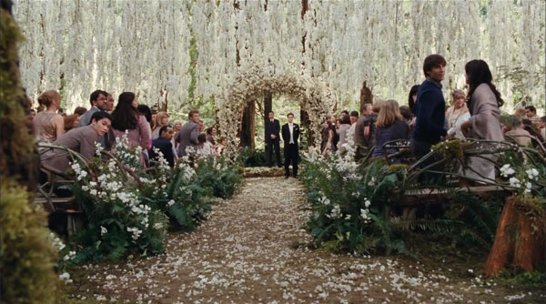 twilight wedding ideas